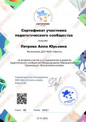 Сертификат участника педагогического сообщества